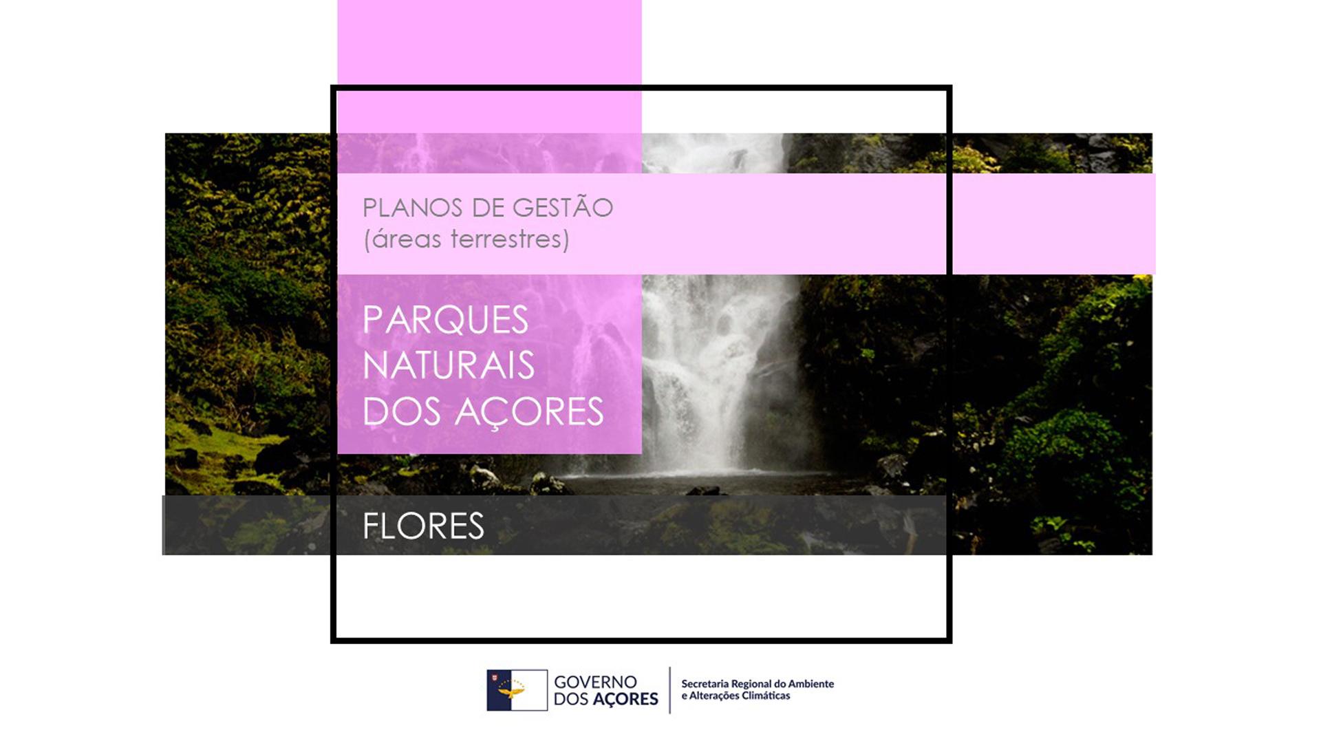 Sessão Pública do Plano de Gestão das Áreas Terrestres do Parque Natural da Ilha das Flores na terça-feira em Santa Cruz
