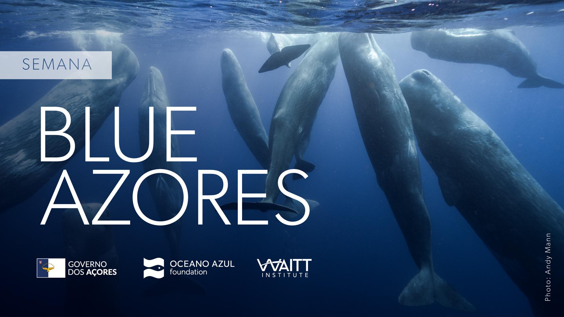 Blue Azores - Cartaz