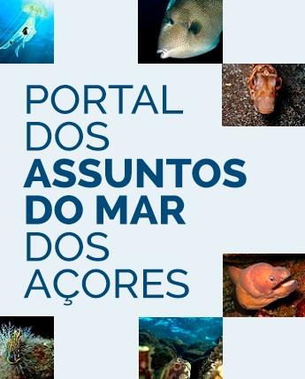Cartão grande do Portal dos Assuntos do Mar dos Açores